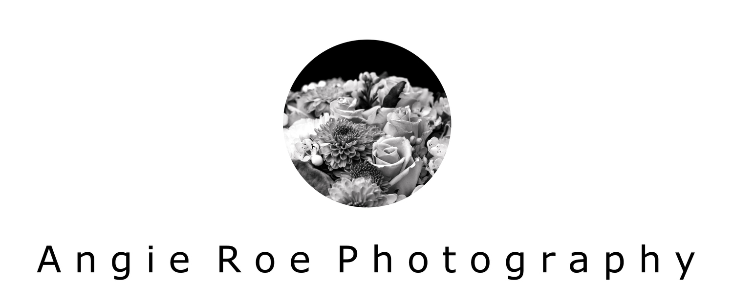 Angie Roe Photography | Professional Photographer, Perth, Avon Valley, Wheatbelt & Surrounds
