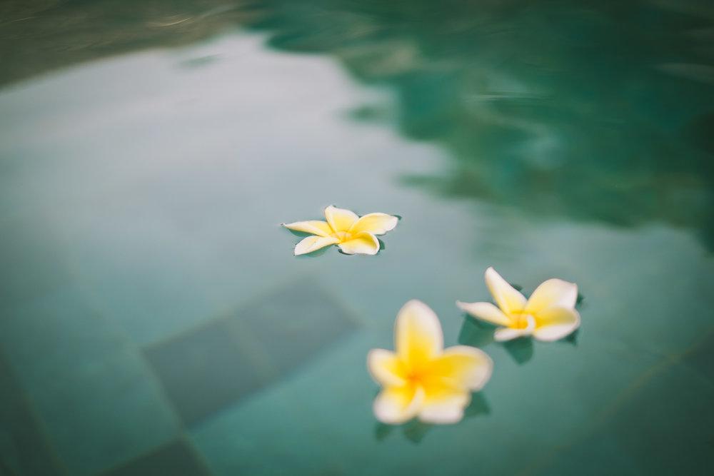 Bali (0).jpg