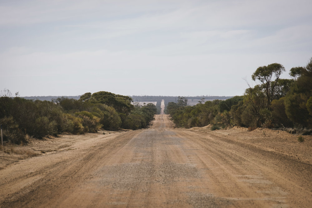 Angie Roe Photography Wheatbelt Rural Farm Landscape Seeding (12).jpg
