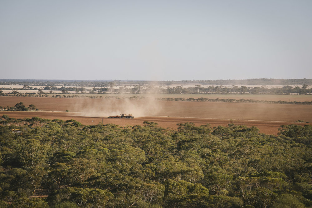 Angie Roe Photography Wheatbelt Rural Farm Landscape Seeding (14).jpg