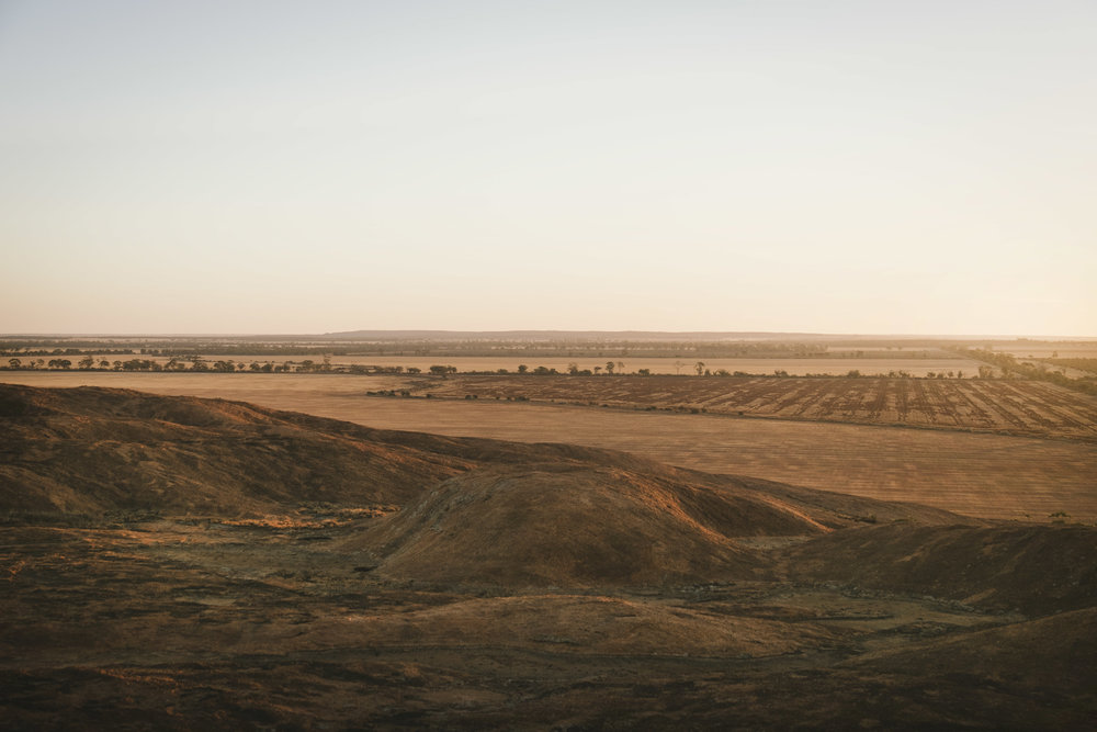 Angie Roe Photography Wheatbelt Rural Farm Landscape Seeding (22).jpg