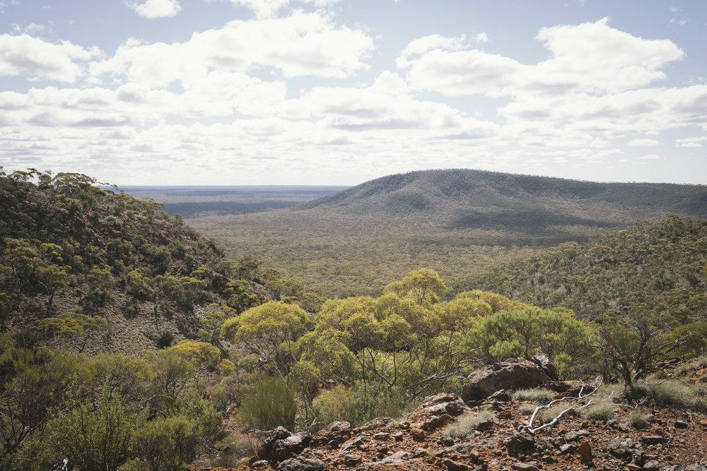 Helena Aurora Range Koolyanobbing (2).jpg