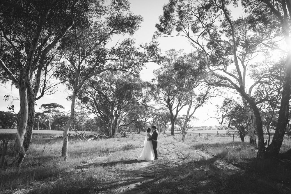 Angie Roe Photography Wheatbelt Avon Valley Farm Wedding (40).jpg