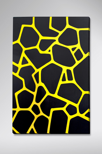 "Black Pattern / 24"" x 30"" Acrylic on canvas / Year of 2011"