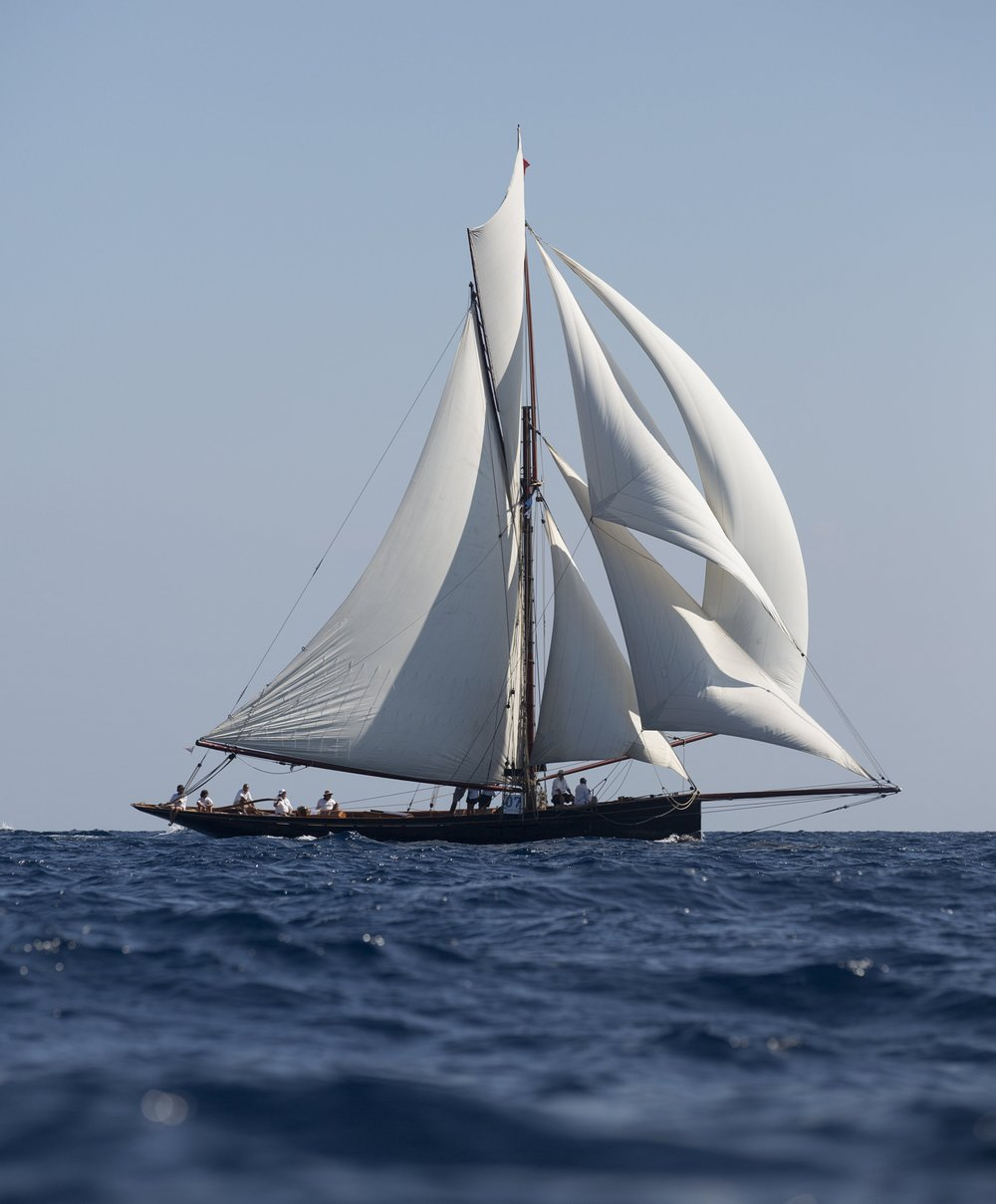 Above: Camper & Nicholson designed yacht MARIGOLD under full sail at Régate Royale Cannes Trophée Panerai 2014 © Emily Harris