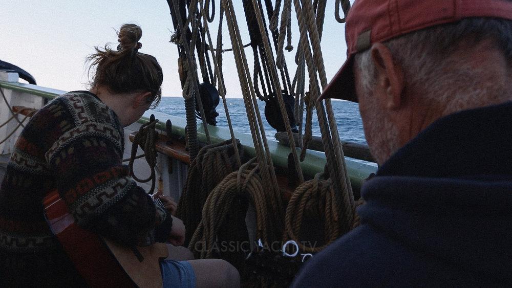 Pilot Whales BE3_CYTV.jpg