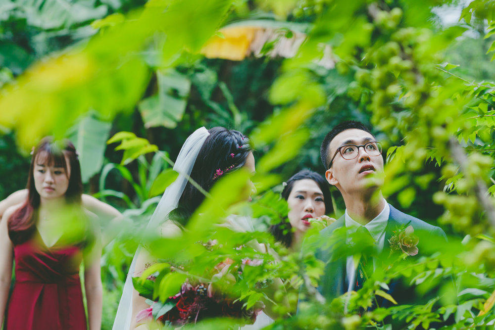 Amy Sampson Destination Photographer | Singapore wedding | Open Farm Community