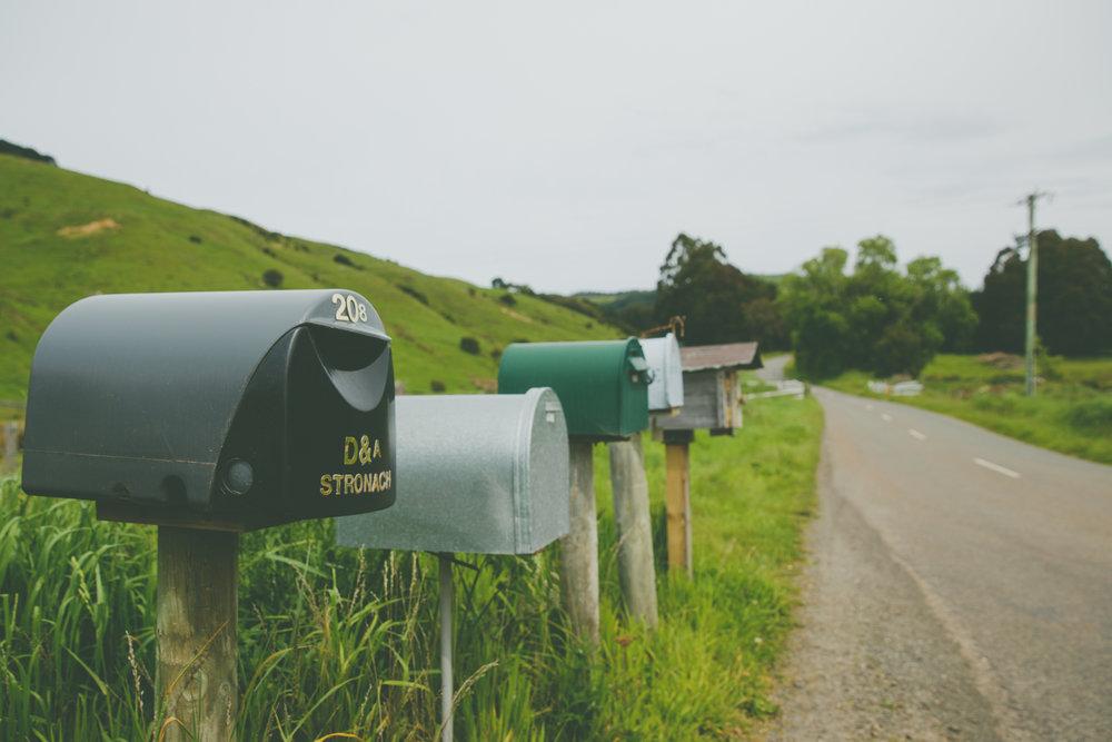 NZ_fb-26.jpg