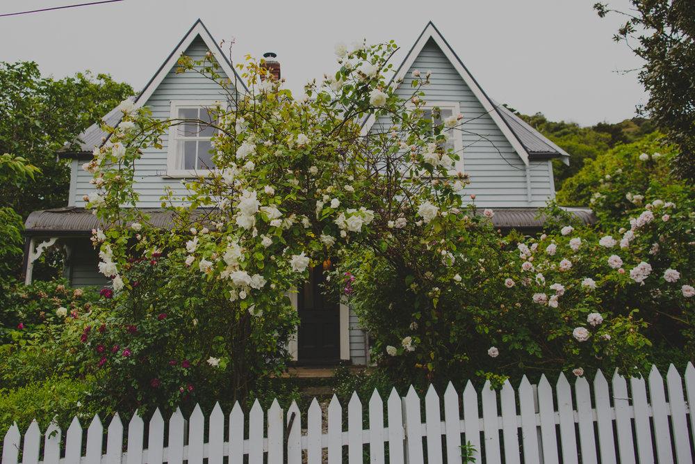 NZ_fb-40.jpg