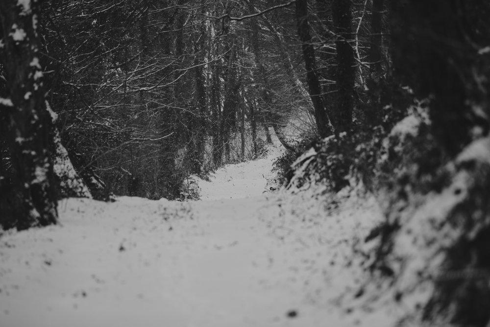 snow-40.jpg