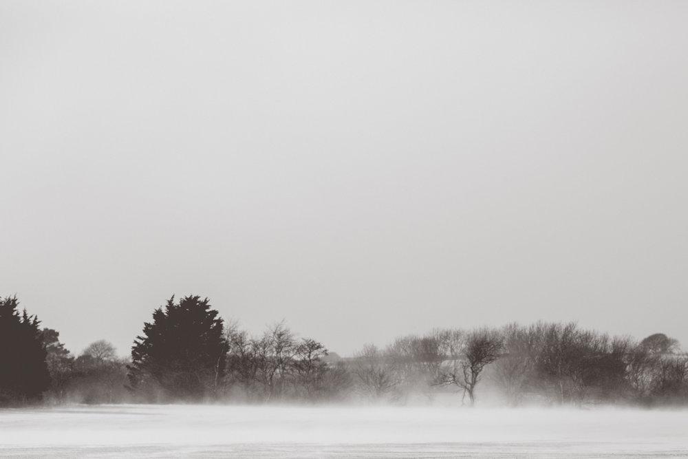 snow-47.jpg