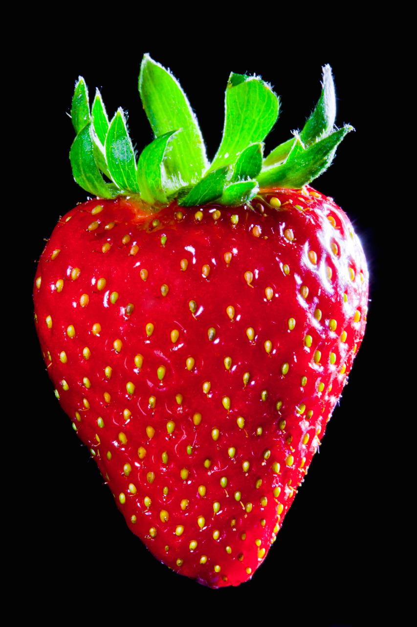 def-fraise_6098.jpg