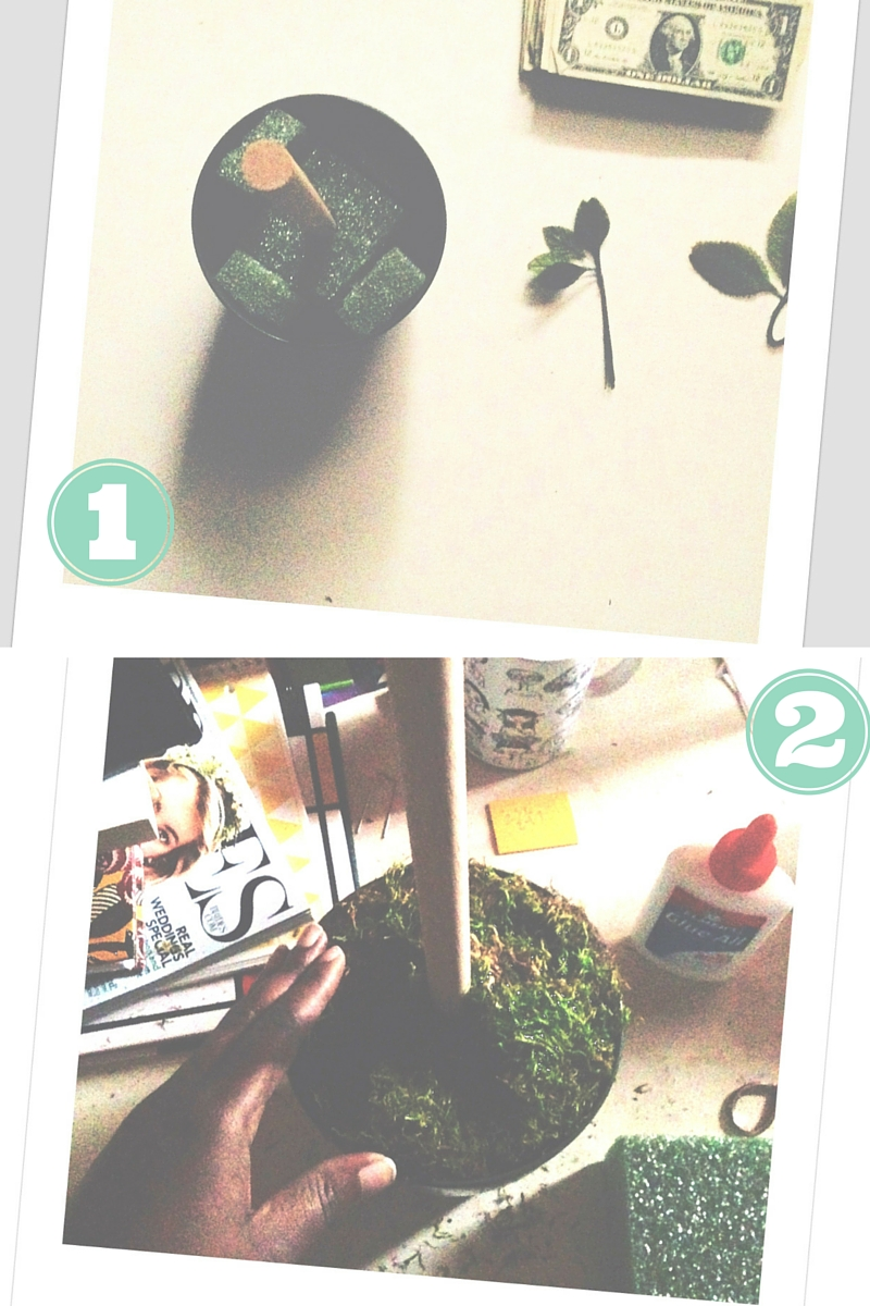 DIY Money Tree