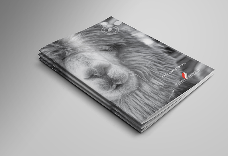 raines_brochure_cover.jpg