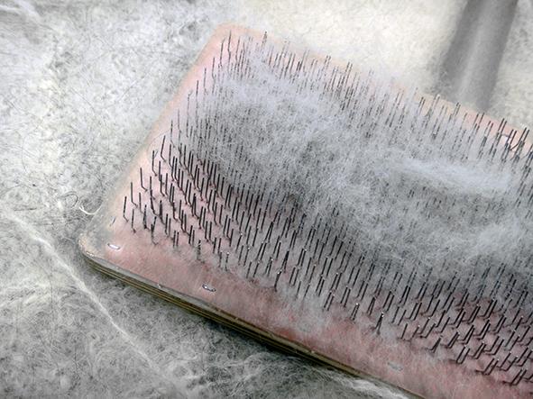 Combing.jpg