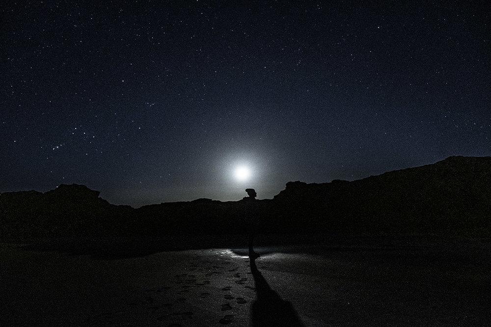 Moonlight wonder!