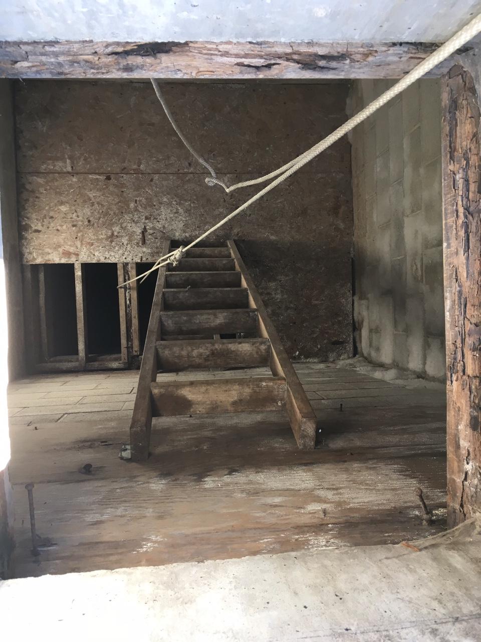 The horrific ascent ladder