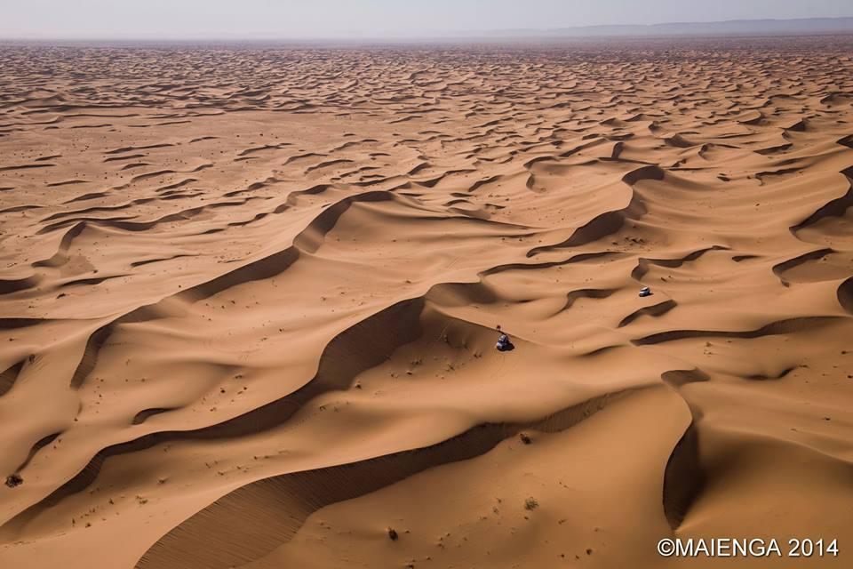Gazelles Desert.jpg