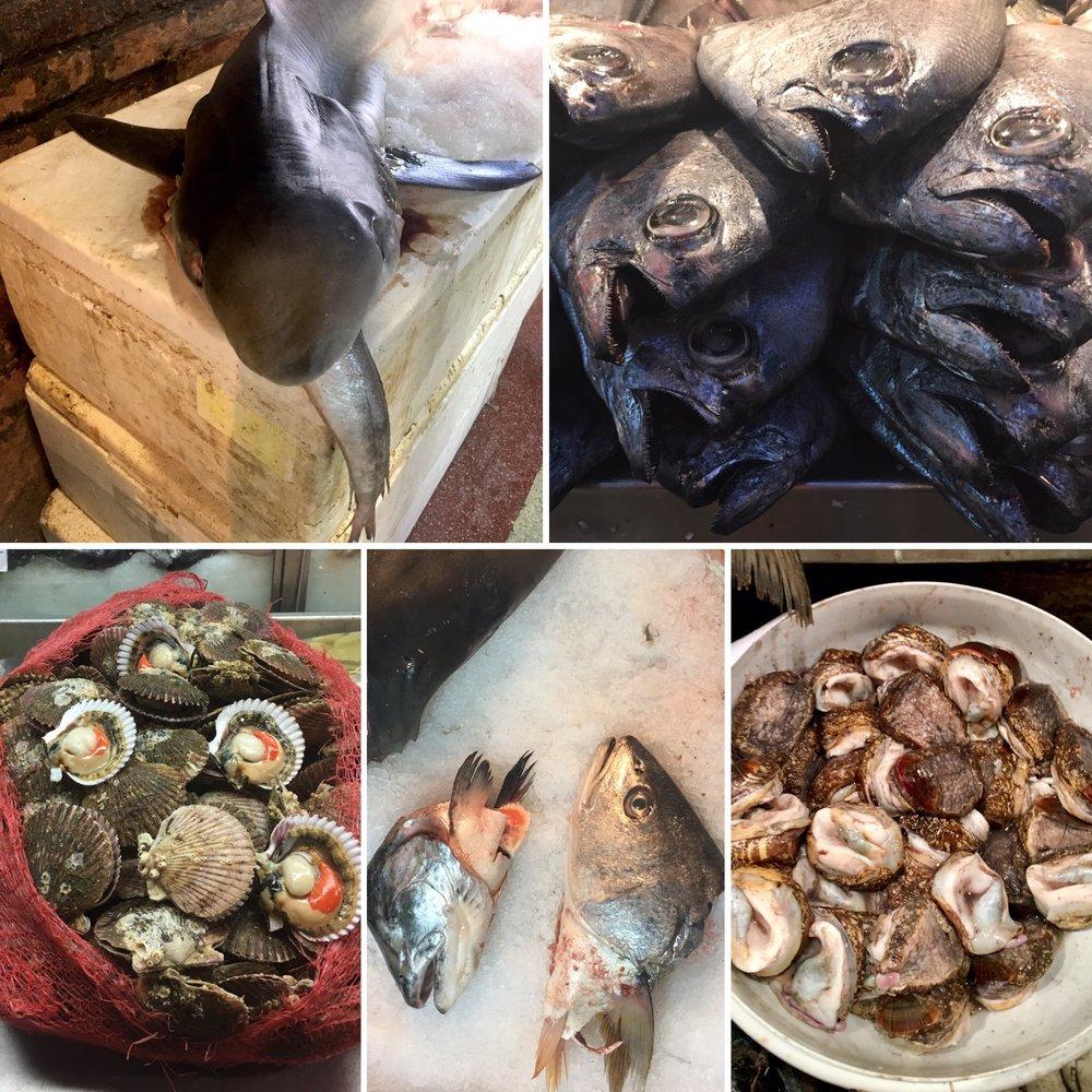 Obligatory fresh fish market photo