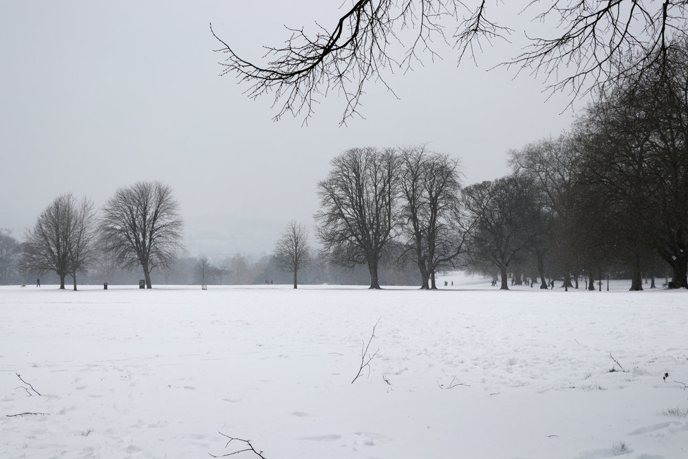Royal Victoria Park (02.03.2018)