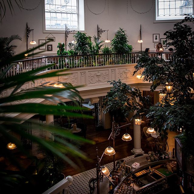 Last night saw the launch party of @thebotanistuk in the recently refurbished Grade II* listed Octagon building on Milsom Place in Bath. The restaurant and bar officially opens to the public on Monday 25th March. However, I was invited to take a sneak peek before their event last night to see what this 8000 sq ft venue will have to offer Bathonians and visitors to our city! 👀 . . . The space is remarkable! A beautiful oasis in the heart of the city which will be the perfect place to pitch up with friends. You will discover a unique menu of cocktails, craft ales and beers, not to mention a food menu featuring everything from burgers to hand-crafted pies, as well as vegetarian and vegan options too. Expect breathtaking interiors and perfectly potted plants (that sure put mine to shame back at home 🌱😳!) . . . I'm excited to visit them again soon!