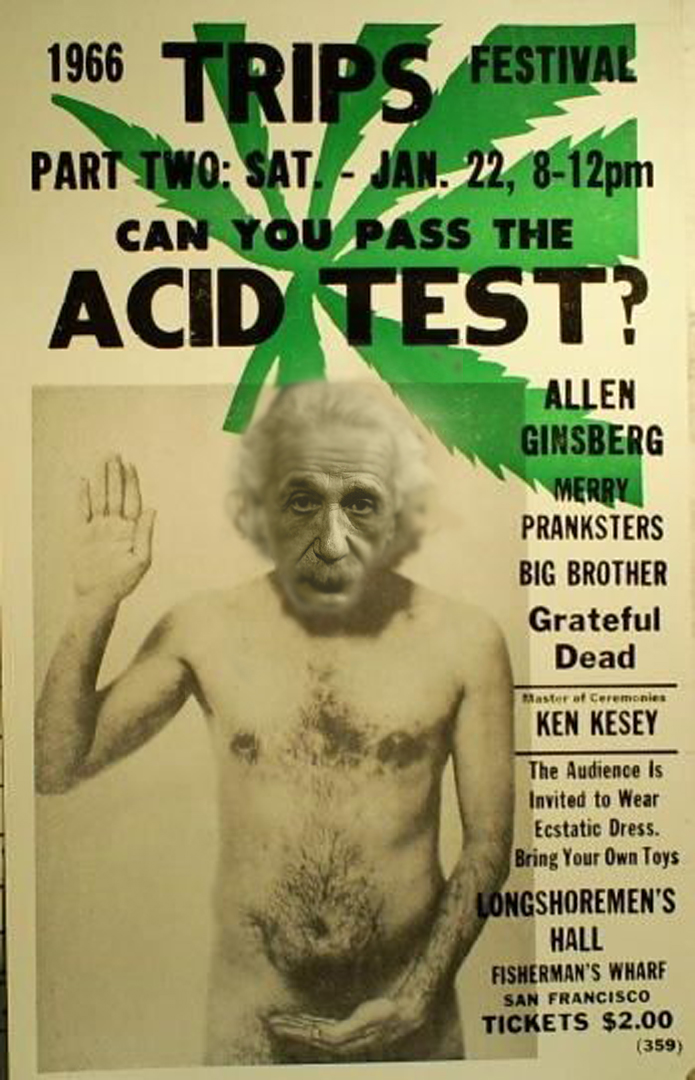 Albert Einstein Tripping The Light Fantastic Acid Test