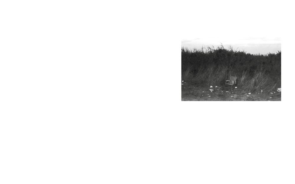 19699.jpg