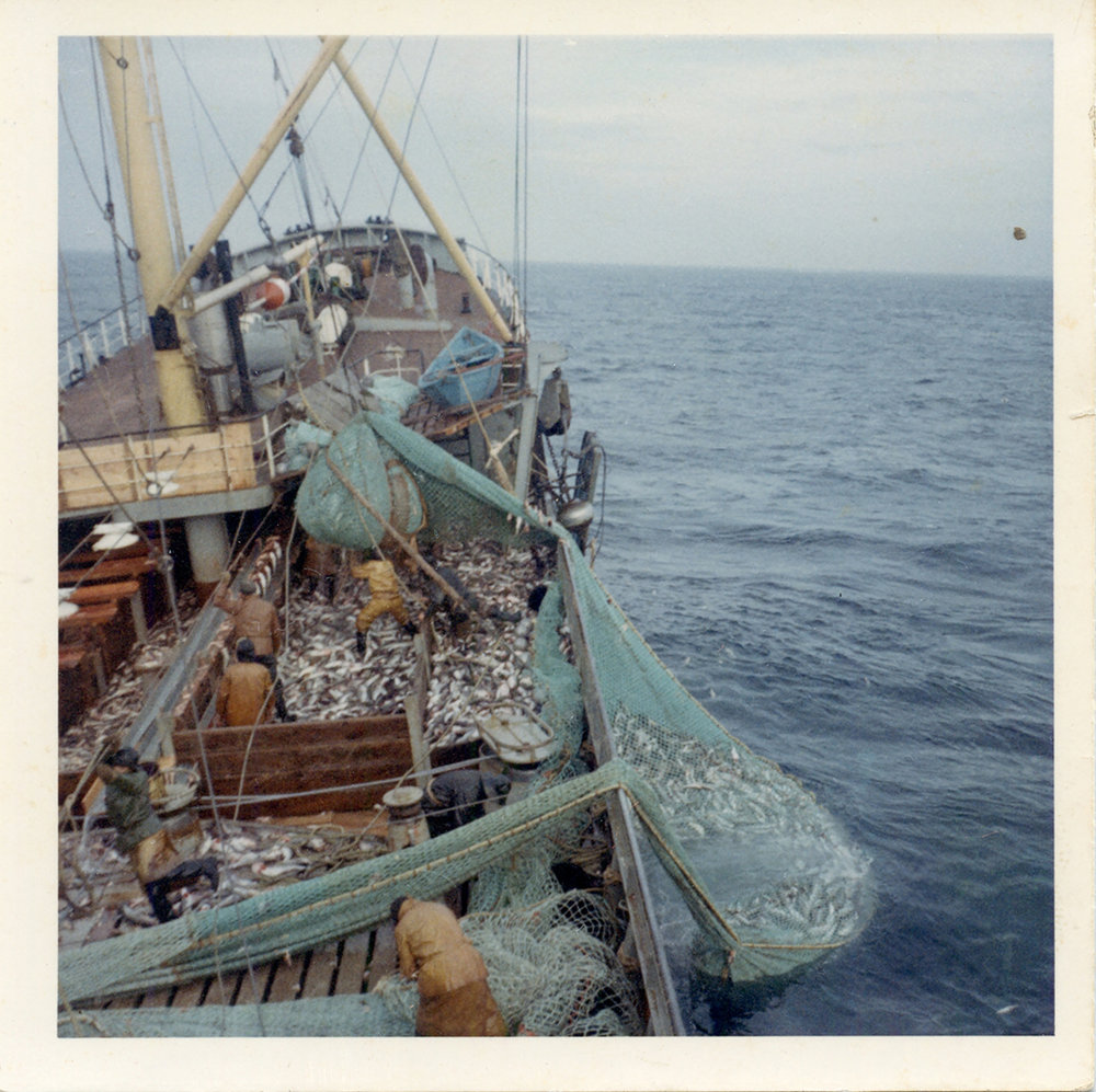 Photograph taken by my grandfather during a fishing season. Circa 1970