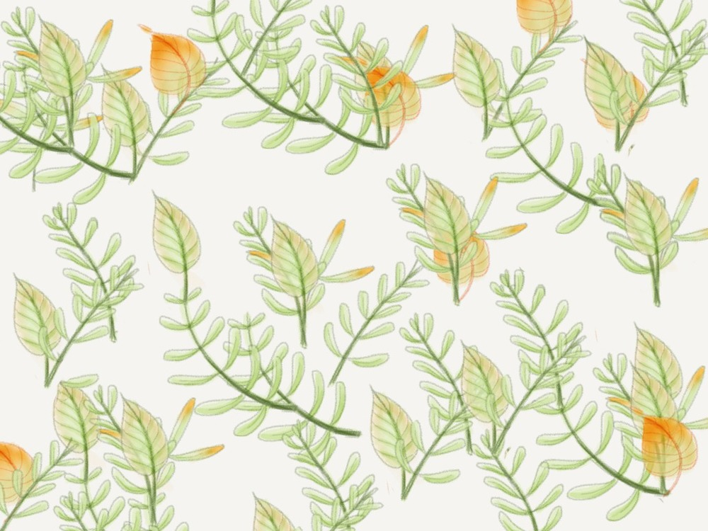 pattern-plants-4004610.jpeg