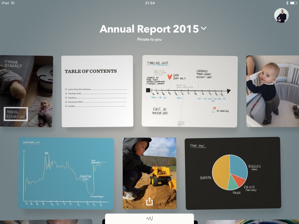 Mathias Jakobsen annual report 6.PNG