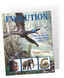 JrS_Book_Projects_evolution