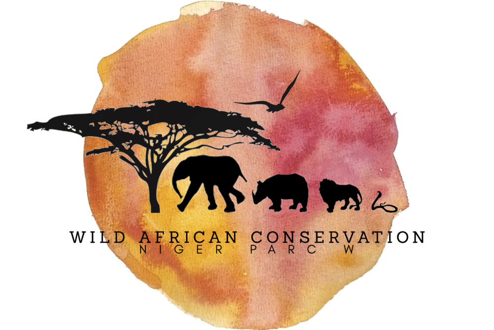 Wild African Conservation