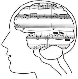 The part of the brain that interprets music is the same part that is used to interpret language. By taking music lessons, students can increase vocabulary skills as well as memory.