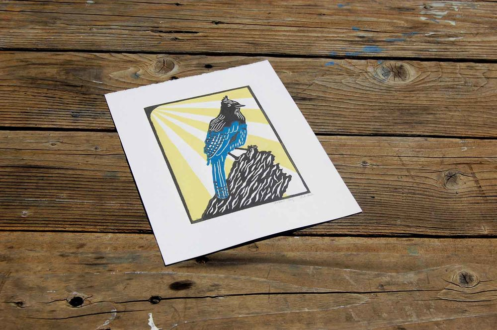 Steller's Jay   Linoleum Block Print