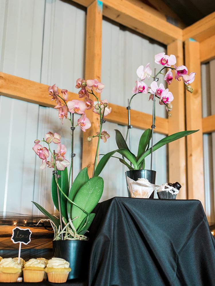 wedding orchids wedding cupcakes waterloo cedar falls ia wedding photographer.jpg