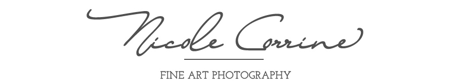Nicole Corrine | Waterloo, IA portrait and wedding photographer