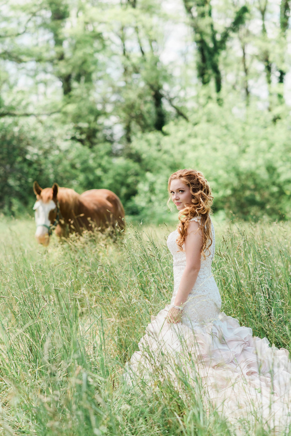 Bride and her horse in a field with David Tutera dress in Kirksville,  Missouri