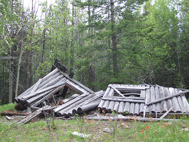 Old collapsed prospectors cabin