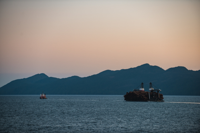 Calvert Island, BC