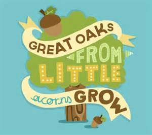 Great oaks from little acorns grow.jpg