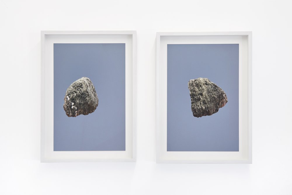 Amy Stephens, Land Reland, William Benington Gallery, 2018. Photography by Corey Bartles-Anderson_Flight  I  and  Flight  II,  2018 copy.jpg
