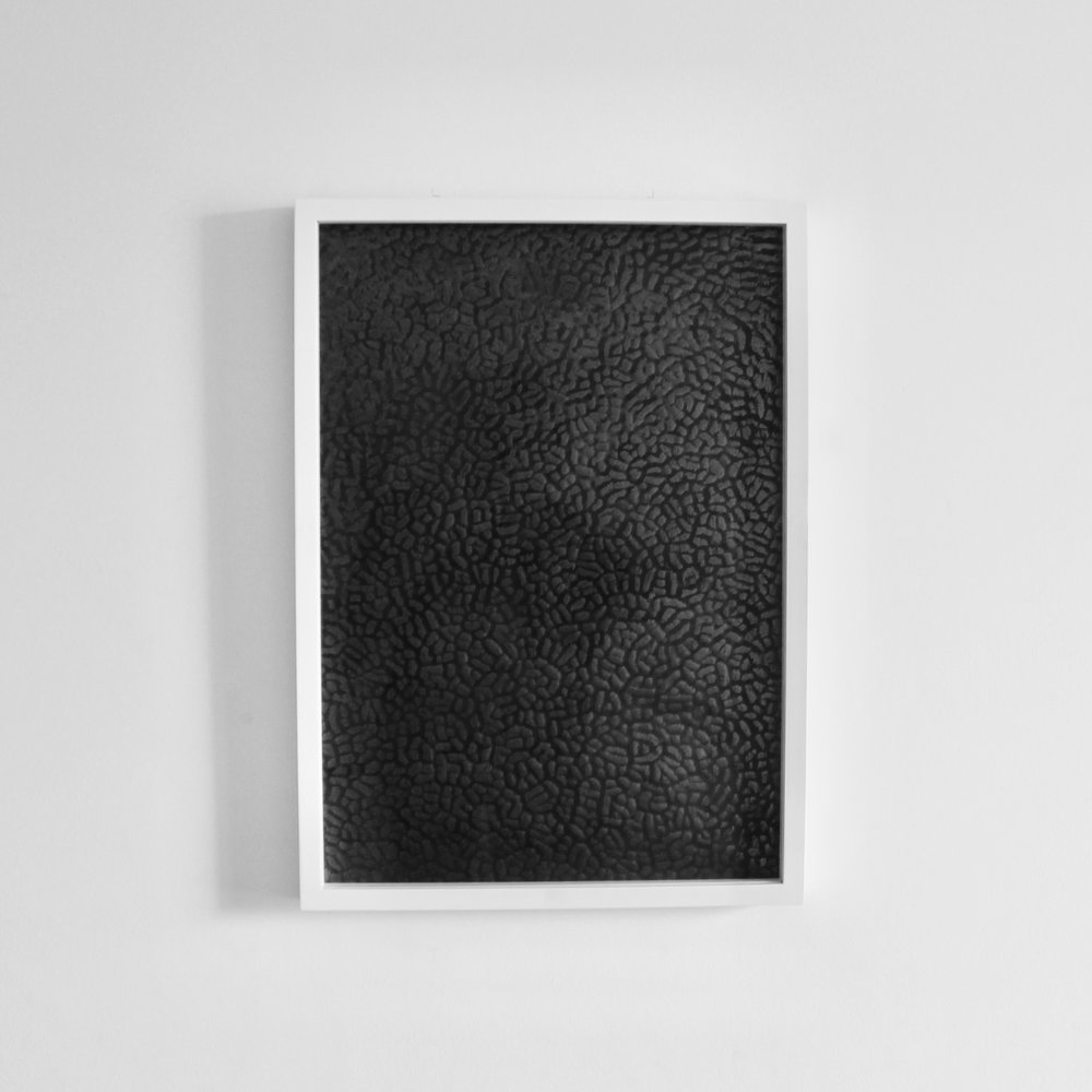 Wash, 2016   Graphite, paper, wood, glass, 55cm x 41cm