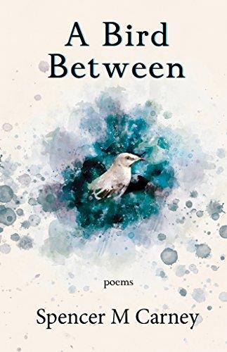 A Bird Between by Spencer M Carney