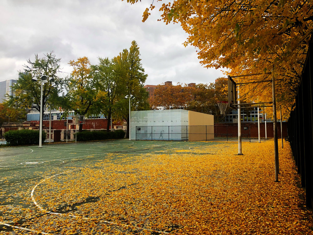 outdoor-squash-court-in-fall-nyc