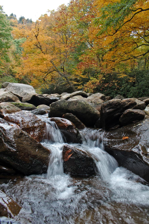 Mountain Creek 1.jpg
