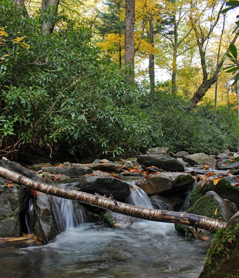 Mountain Creek 2.jpg