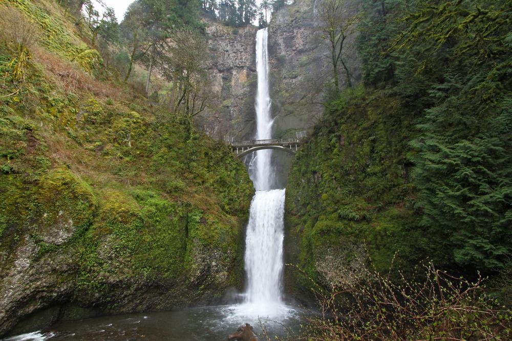 Oregon Waterfall 1.jpg