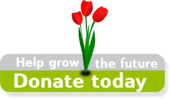 donate-button-large.png