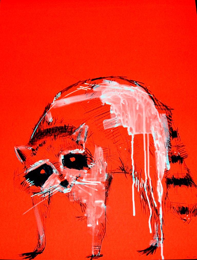 Enzo Moscarella_Untitled Raccon drawing.jpg.jpg