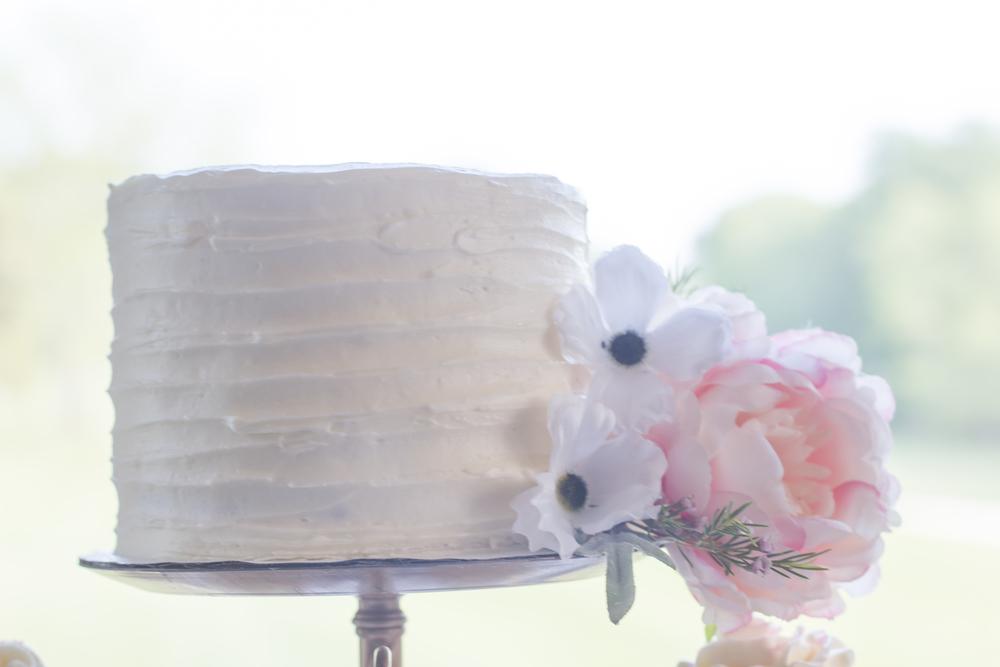 kim+jerry-cake.jpg
